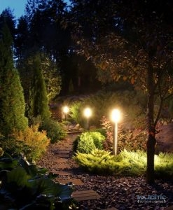 An Illuminated Pathway
